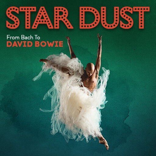 STARDUST - From Bach to Bowie
