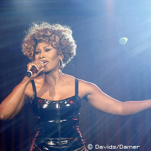 Simply the Best - Das Tina Turner